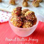 Peanut Butter Honey Granola Bites