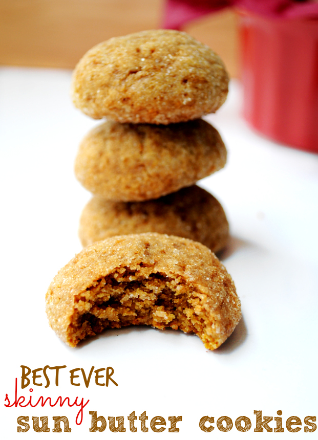 Best Ever Skinny Sun Butter Cookies- less than 100 calories and ...