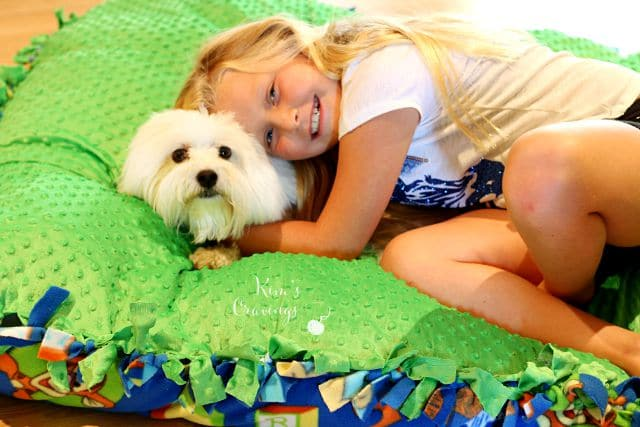 DIY Puppy Pillow