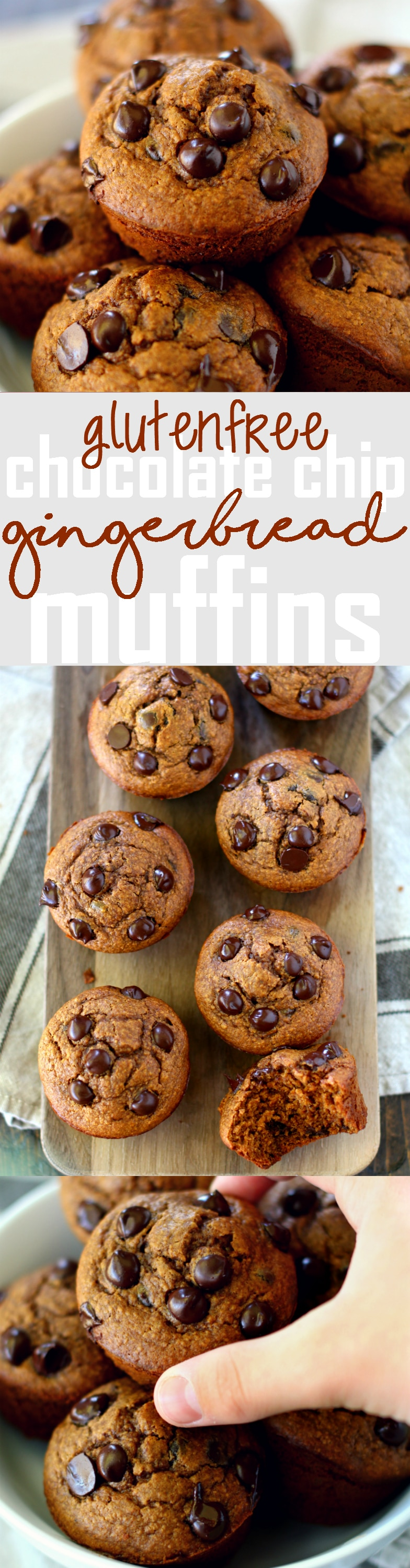 These cozy Gluten-Free Chocolate Chip Gingerbread Muffins, bursting ...