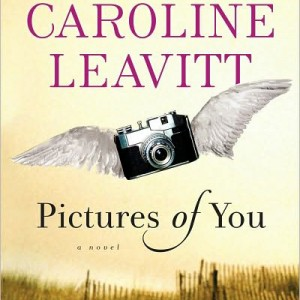 Book Review of Pictures of You