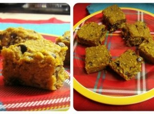 Chocolate Chip Pumpkin Blondies & a cookies for a cause