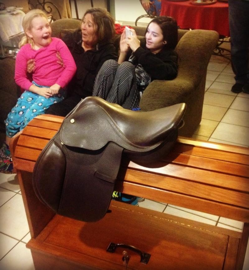 madelyn saddle