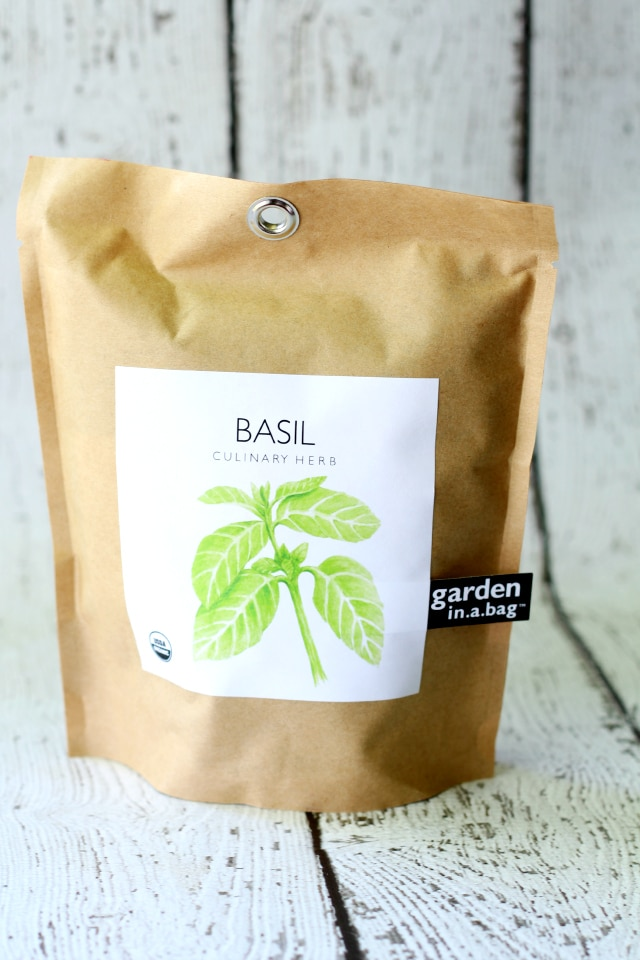 Garden-in-a-Bag Basil