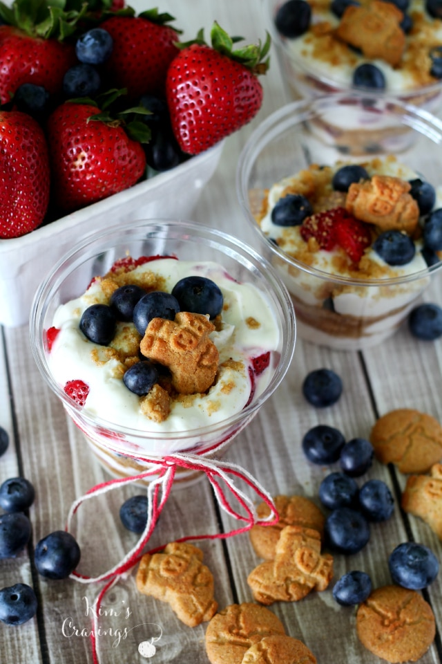 Rock your patriotism with Red, White and Blueberry Parfaits! A fabulous healthy summer treat- perfect for celebrating America!