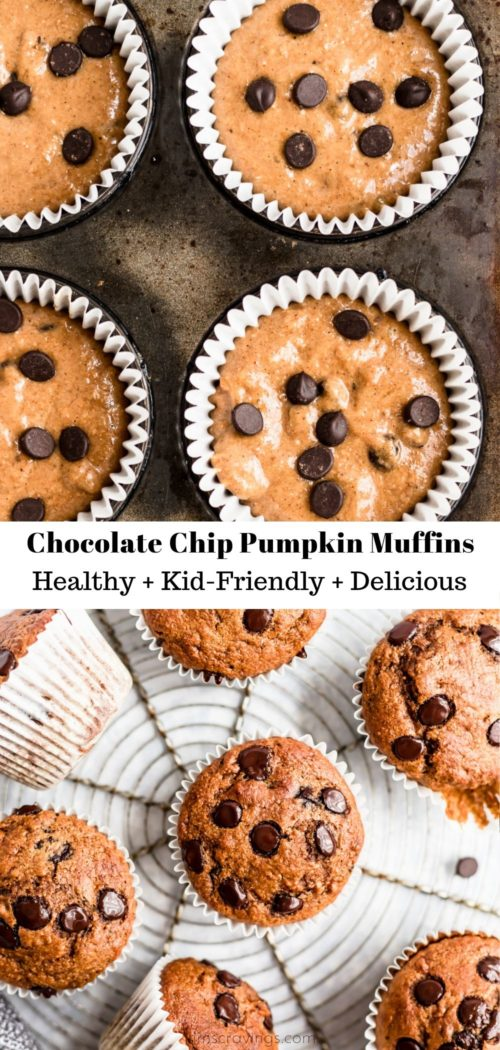 making Chocolate Chip Pumpkin Muffins