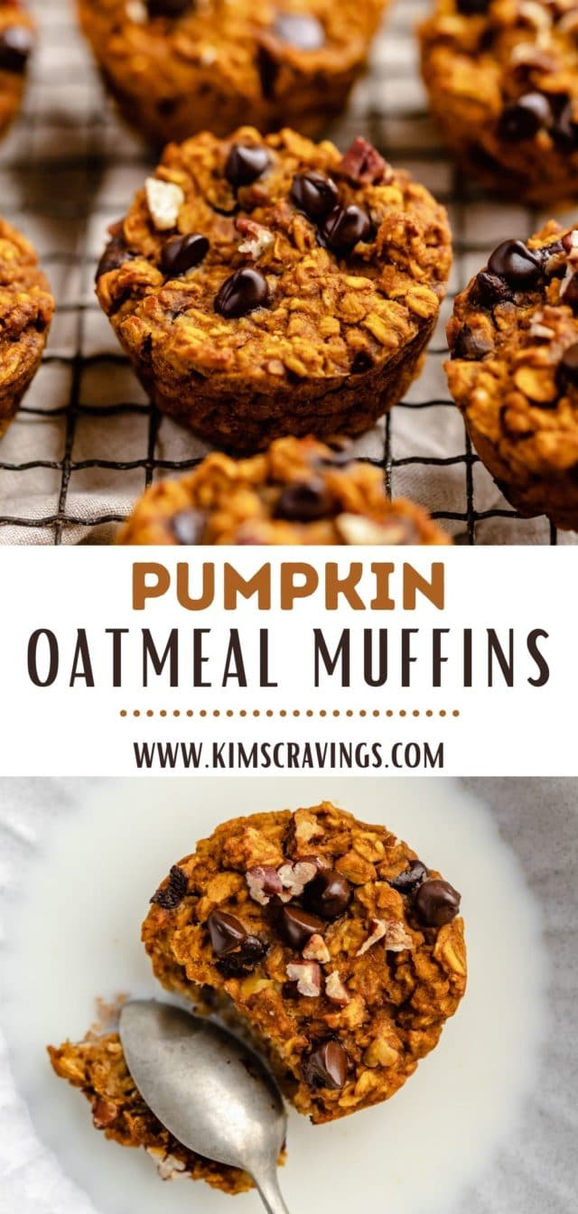 pumpkin oatmeal muffins with chocolate chips