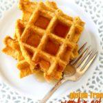 Gluten-Free Pumpkin Oat Waffles