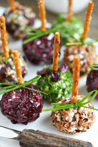 cranberry-pecan-goat-cheese-mini-cheese-balls-close-up