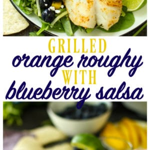 It's grilling season and I could not be happier about it! Fresh off the grill is Orange Roughy with Blueberry MangoSalsa. It's everything you could want in a summer meal - light, fresh and flavorful.