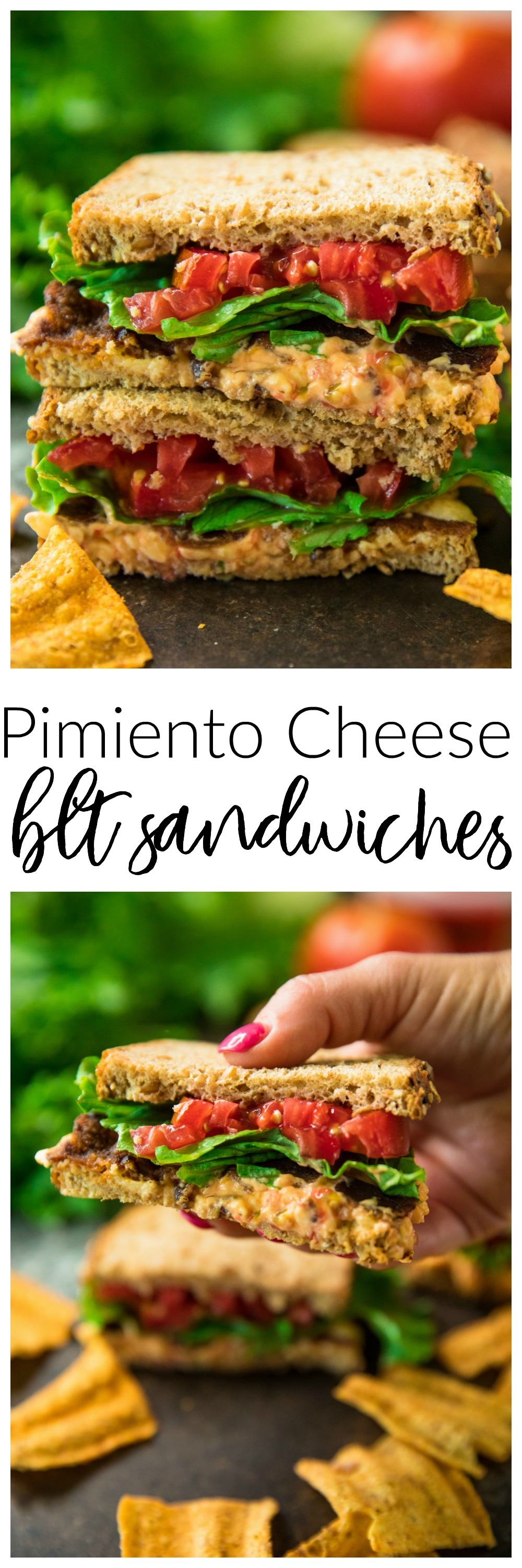 5-Ingredient pimiento cheese BLT sandwiches are crisp, fresh, flavorful, and so delicious. If you love sandwiches, this is a must try!