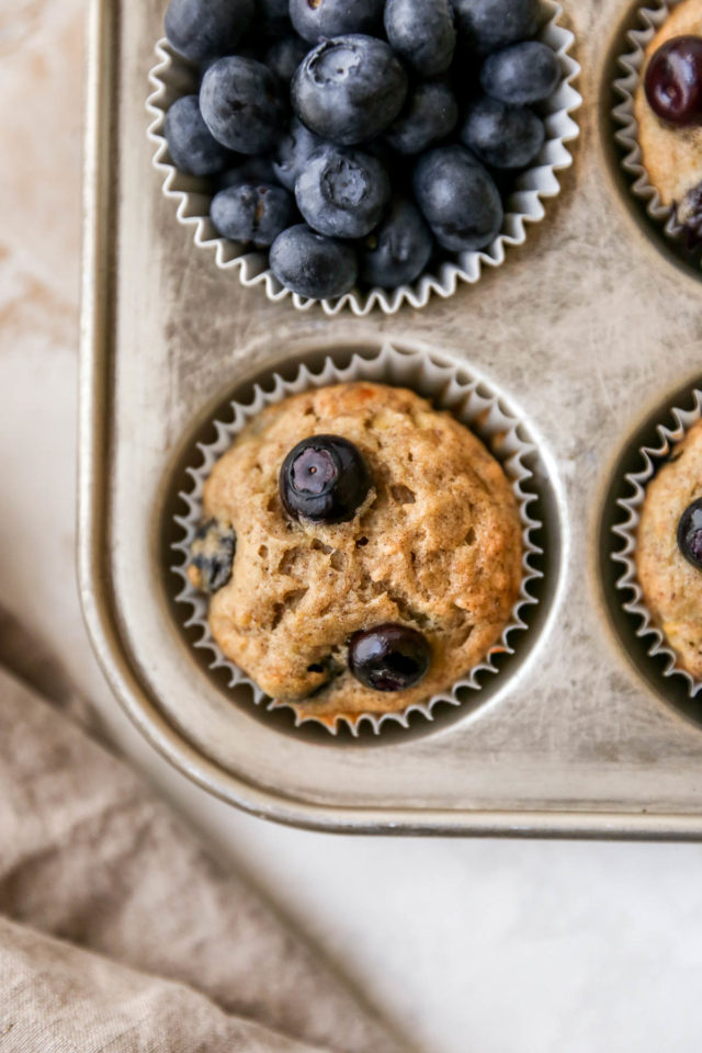 muffins topped with blueberries in a muffin pan