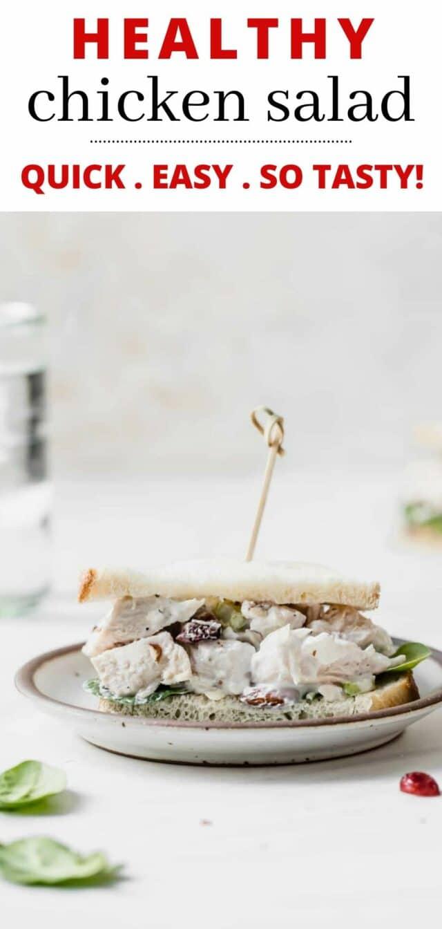 Healthy Chicken Salad with Greek Yogurt on a plate