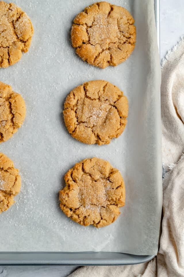 baked peanut butter cookies on a baking sheet pan