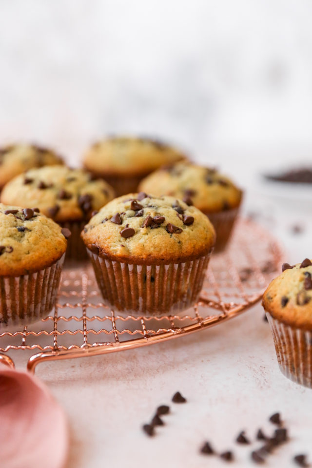 large muffin topped with mini chocolate chips