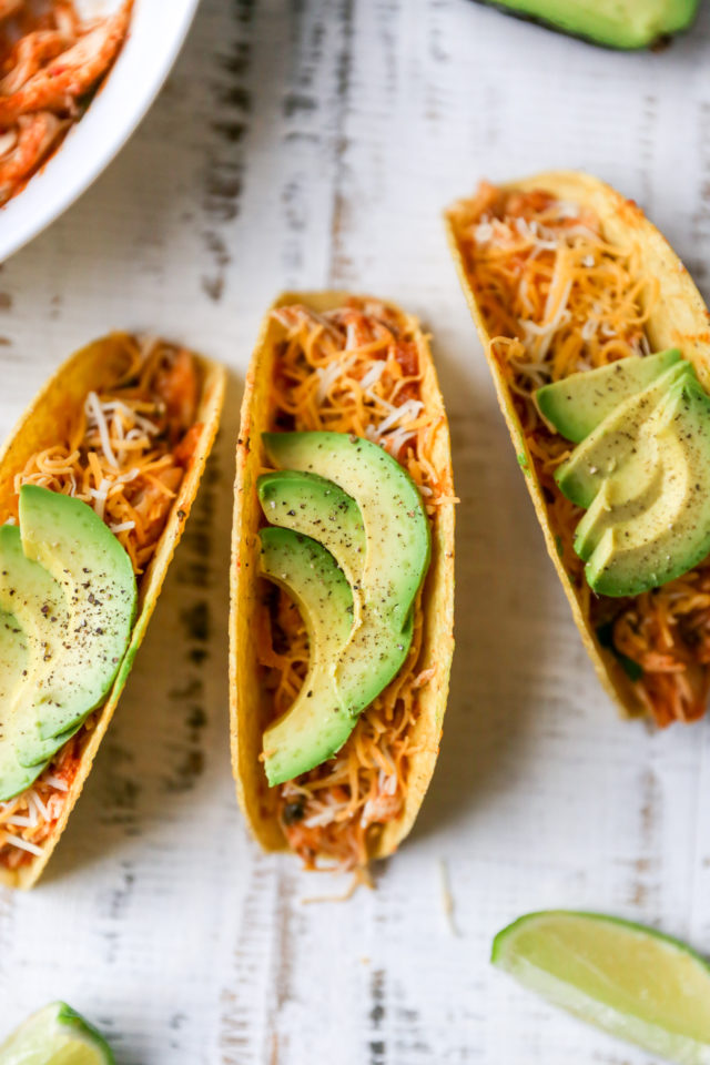 crockpot salsa chicken served in taco shells with cheese and avocado slices
